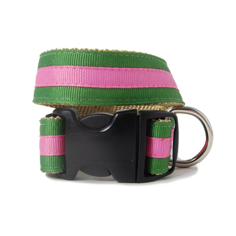Green and Pink Buffy Dog Collar