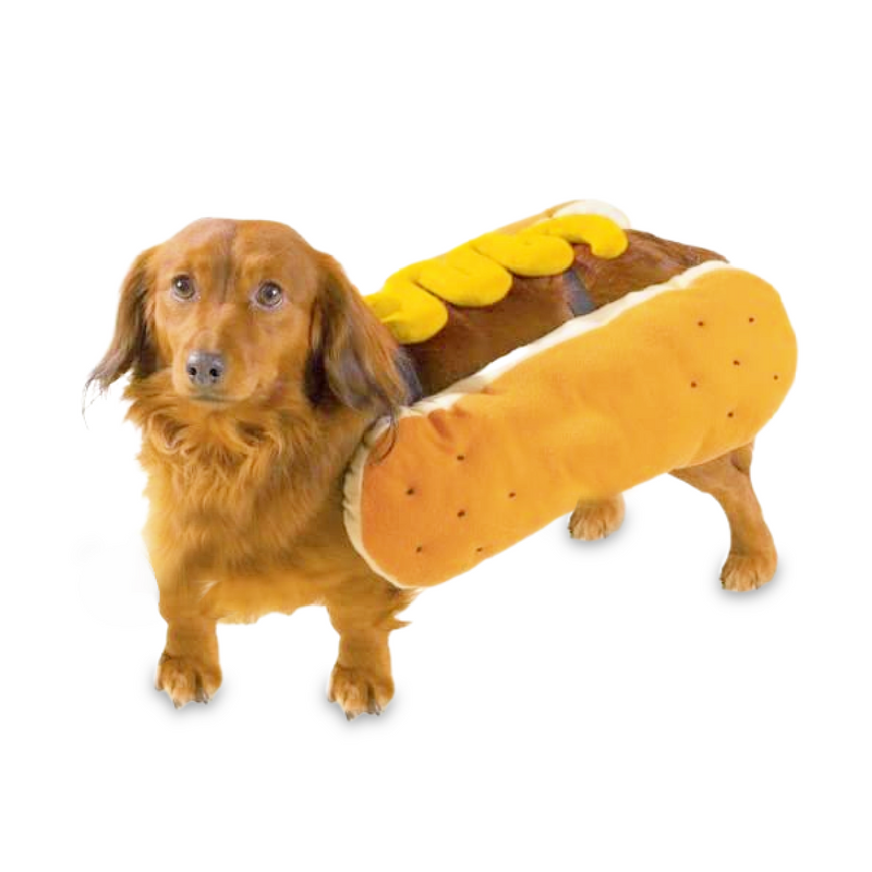 Hot Dog Costume - FINAL SALE