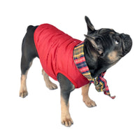 Bandana Puffer Dog Jacket - FINAL SALE