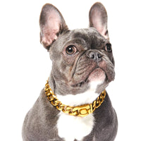 Cuban Link Gold Chain Dog Necklace