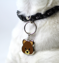 Teddy Engraved Pet Tag