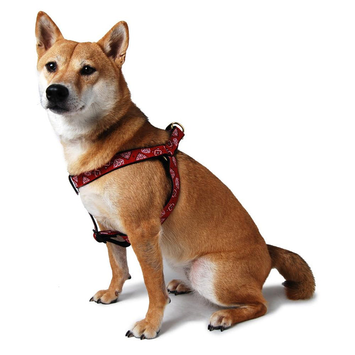 Bandana Step In Dog Harness