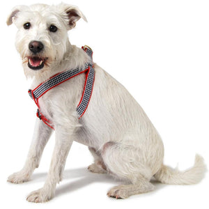 Houndstooth Step In Dog Harness