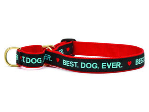 Best Dog Ever Martingale Dog Collar