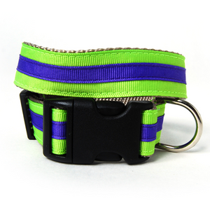 Neon Green and Purple Stripe Dog Collar