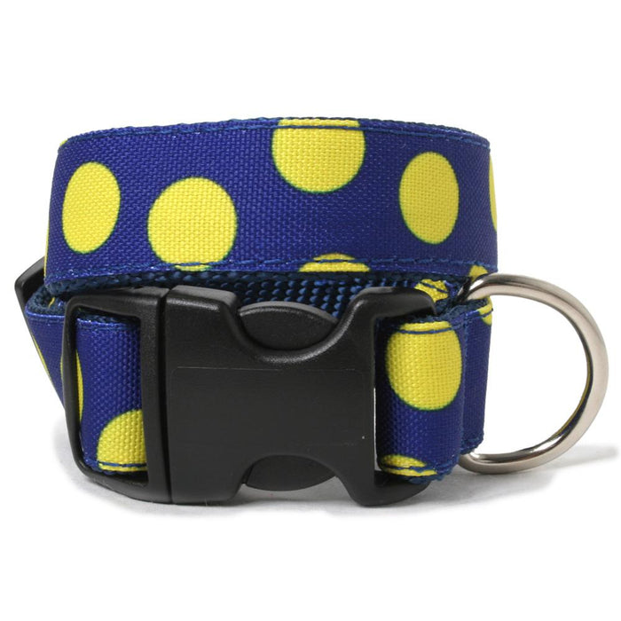 Neon Dots Dog Collar
