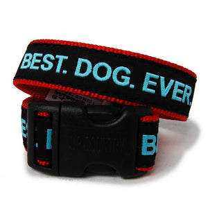Best Dog Ever Dog Collar