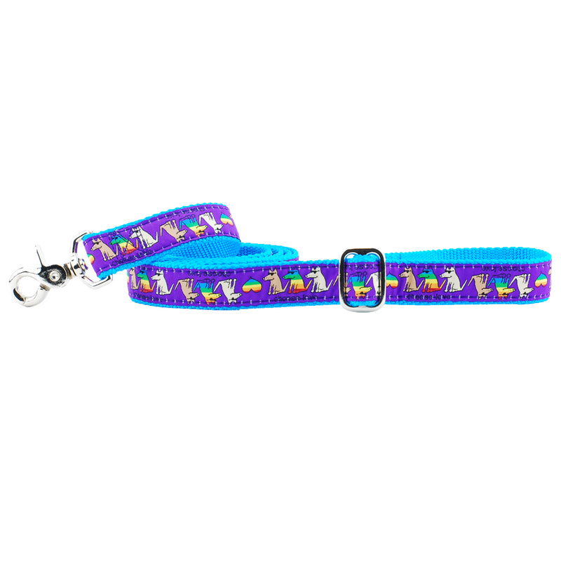 Teddy The Dog Choose Love Rainbow Dog Leash