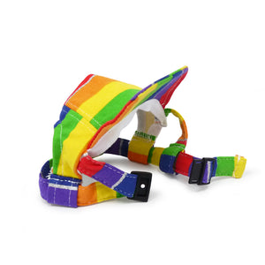 Rainbow Stripe Dog Hat