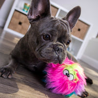 Rainbow FurBallz Dog Toy