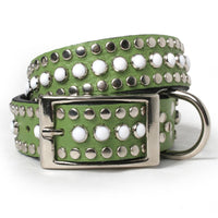 White Cabs and Silver Studs on Green Leather Dog Collar