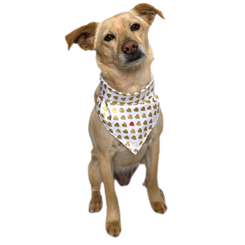 Gold Hearts Dog Bandana