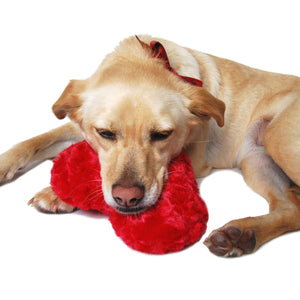 Heart Swirl Chenille Plush Dog Toy