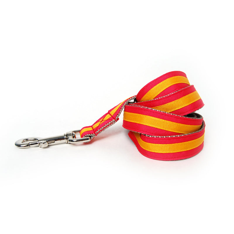 Coral and Gold Stripe Dog Leash