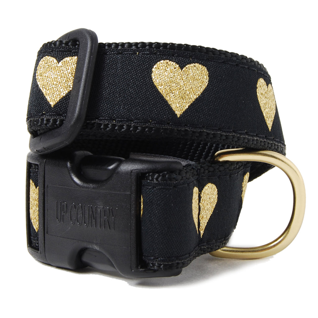 Heart of Gold Dog Collar