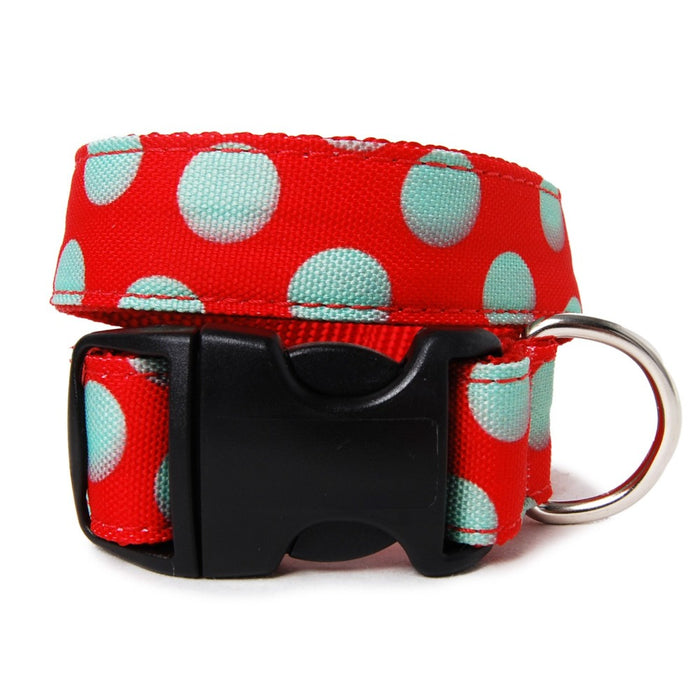 Green Dots on Red Dog Collar