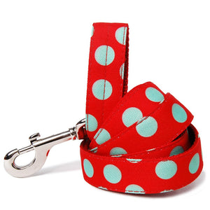 Green Dots on Red Dog Leash