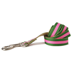 Green and Pink Stripe Dog Leash