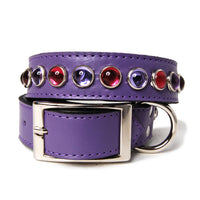 Purple and Pink Cabs on Purple Leather Dog Collar