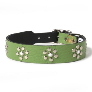 White Cabs and Daisy Studs on Green Leather Dog Collar