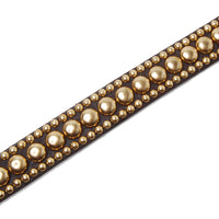 Gold Studs on Chocolate Leather Dog Collar