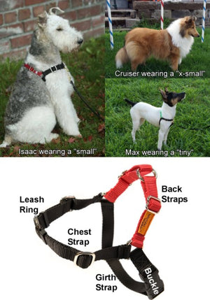 Wonder Walker™ Body Halter© Dog Harness