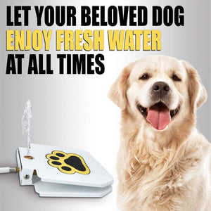 Outdoor Dog Water Fountain Toy - SOGO-LIFE