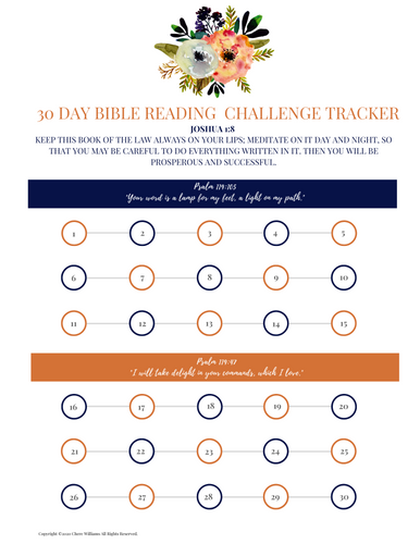 30 Day Bible Challenge Tracker Printable