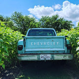 Professional Photography On-site & Vintage Truck Rental