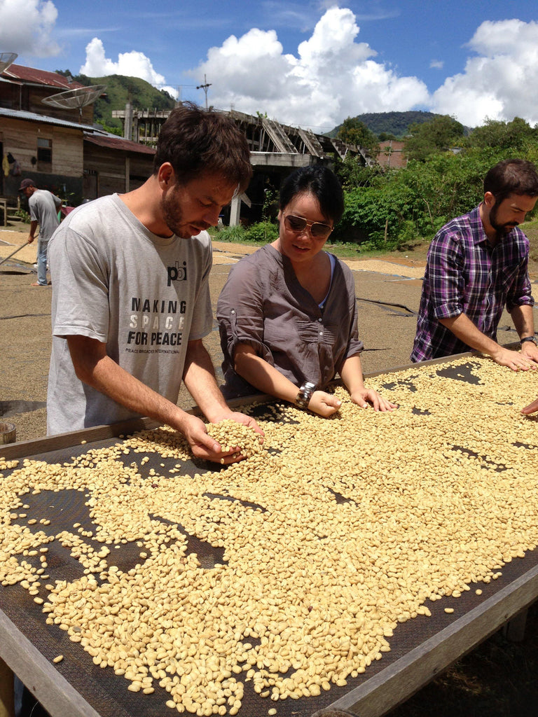 Specialty Coffee With A Purpose