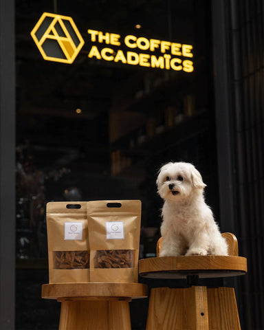 "Limited Edition ""Music & Paws"" Charity Tote Bag + Woof Twisters Dog Treats - The Coffee Academics"