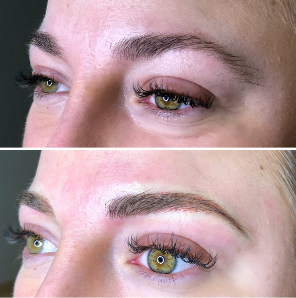 Brows - 3 To 6 Month Touch Up