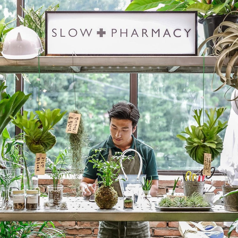 Slow Pharmacy SMALL BOTTLE PLANT No 20 Plants Designobjekt Geschenk gift