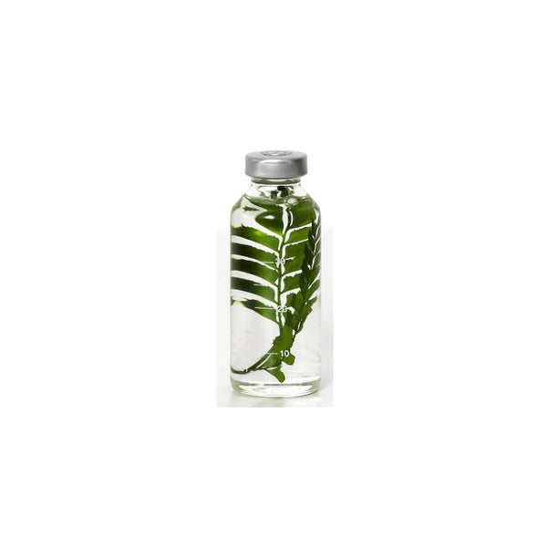 SlowPharmacy SMALL BOTTLE PLANT No11 Plants Designobjekt Geschenk gift