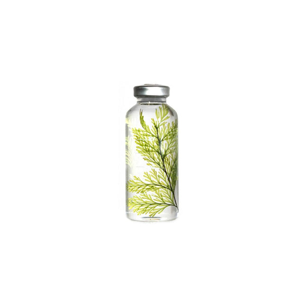 Slow Pharmacy SMALL BOTTLE PLANT No 21 Plants Designobjekt Geschenk gift