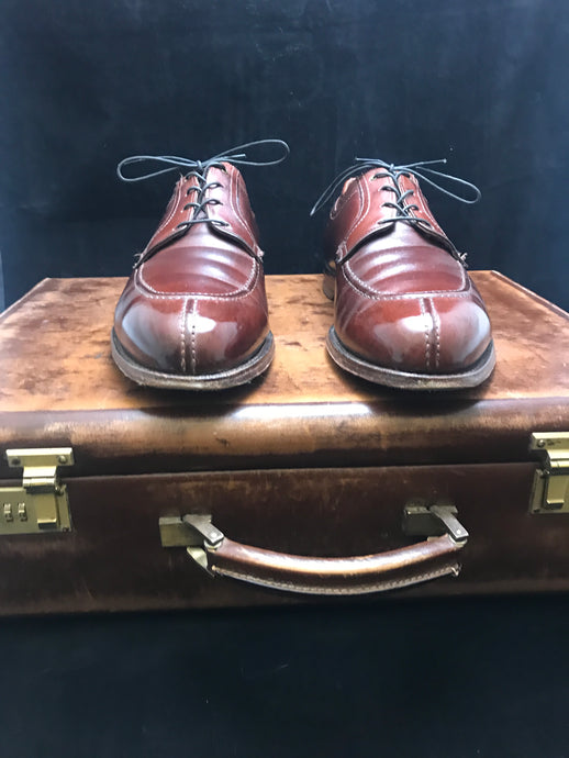 Video – Routine Shoe Shine