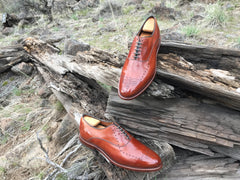 Pair of Mirror Shined Allen Edmonds Walnut Weybridge on a wood fence