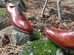 Mirror Shined Allen Edmonds Walnut Weybridge Oxford Leather Shoes on mossy rocks