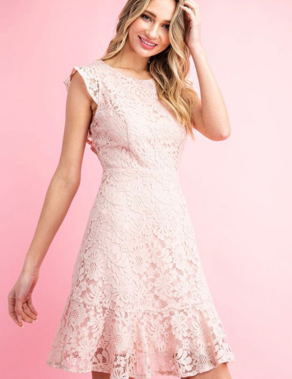 Stella Fitted Lace Mini Dress