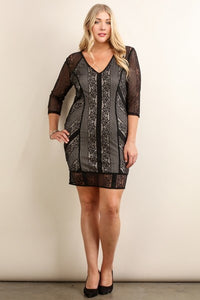 Long Sleeve V-Neck Lace Dress