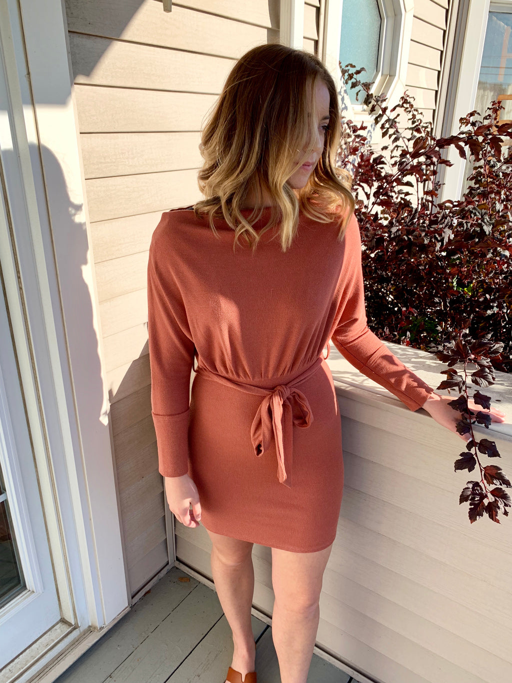 Astrid Long Sleeve Sweater Dress