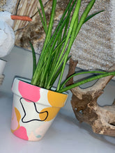 "Load image into Gallery viewer, 3.5"" SMALL - TROPICAL POP ART PLANTER"