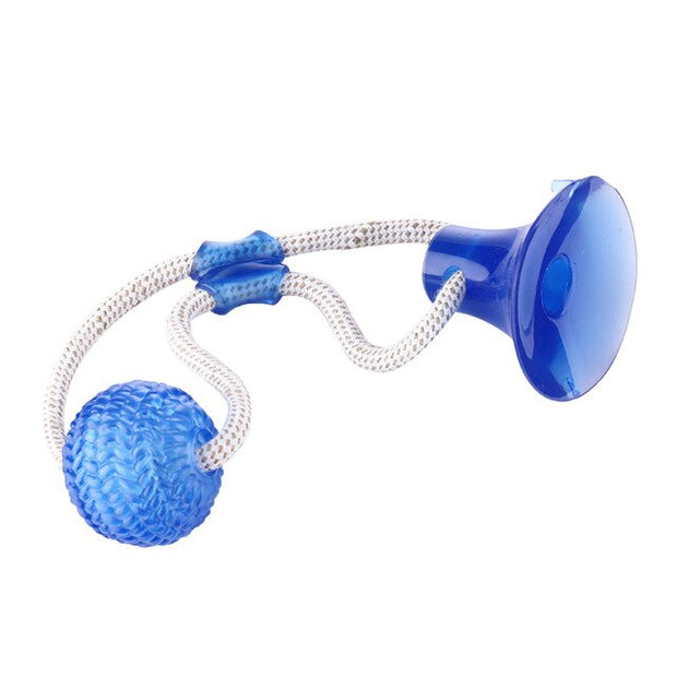 Suction Cup Dog  TPR Ball Toy