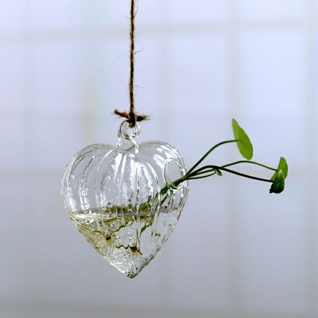 Garden Supplies Home Hanging Glass Ball Vase