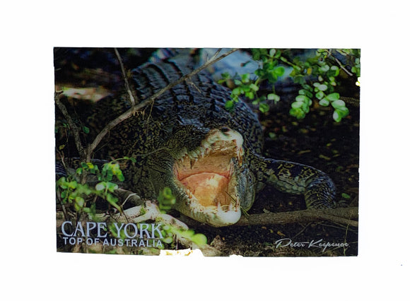 Crocodile PK 3D Postcard