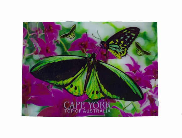 Birdwing Butterfly 3D Postcard