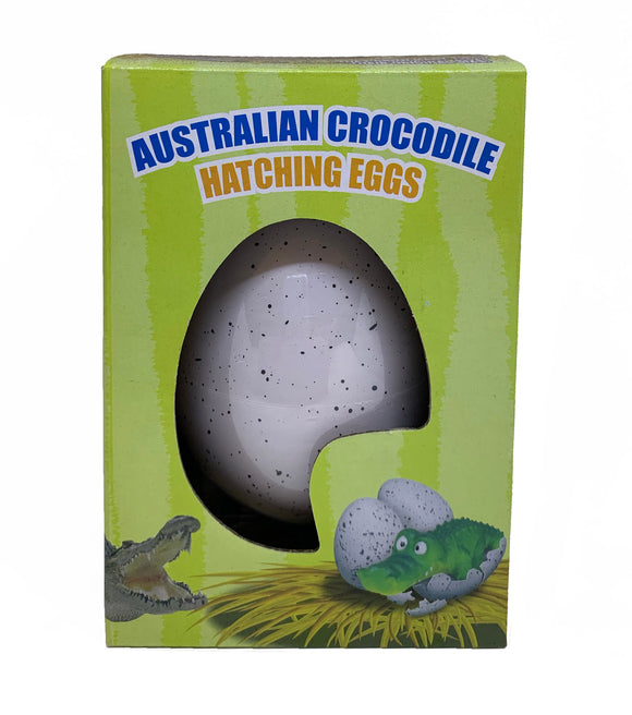 Large Crocodile Hatching Egg