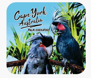Palm Cockatoo coaster