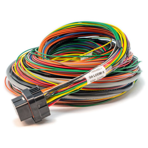 LOOM A (2.5M) - WIREIN ECU