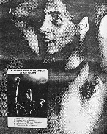 <b>In the Shadow of Forward Motion </b><br>David Wojnarowicz
